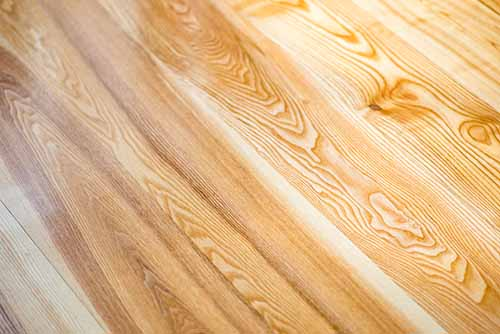 Close up image of varnished ash wood floor boards - wood flooring product